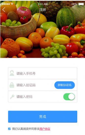 萝卜茄子丝瓜荔枝黄瓜草莓ios苹果版app下载图2: