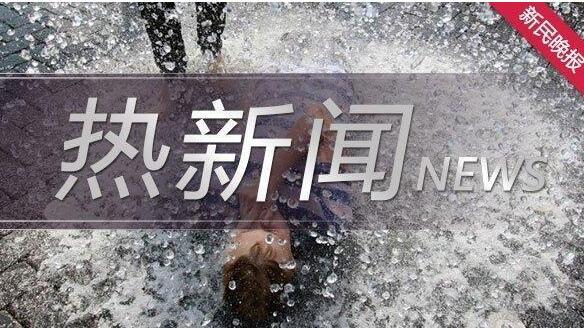 上海教育电视台公共安全教育特别节目直播视频在哪里看 上海教育电视台公共安全教育特别节目直播视频回放免费分享[多图]