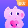 皮皮猪交友app官方版下载 v1.0