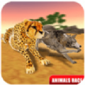 动物赛跑模拟2020游戏最新手机安卓版 v1.0