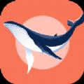 蓝鲸快讯app软件下载 v1.0.0