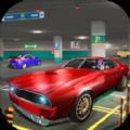 多面停车司机游戏最新安卓版 v1.0