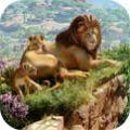 凉心动物园中文游戏手机版 v1.0