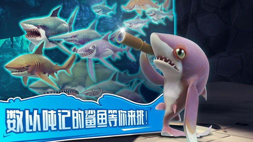 饥饿鲨世界杀人鲸解锁官方破解版图1: