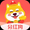 狗狗世界分�t版app官方下�d v1.0.2