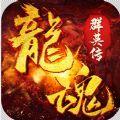 龙魂群英传手游官网最新版 v1.0