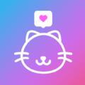探伊app