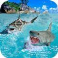 鲨鱼捕猎手游戏