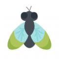 夏蝉app软件下载 v1.0