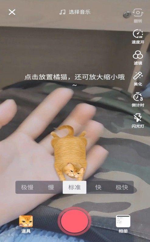 抖音AR橘猫怎么放置 AR橘猫放置方法介绍[多图]
