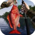 钓鱼大师3D游戏安卓版 v1.0