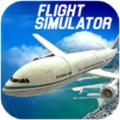疯狂飞行模拟器游戏最新手机版下载 v1.0