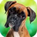 恶犬游戏手机版 v1.0.4