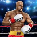 拳击格斗大赛游戏最新版 v1.0