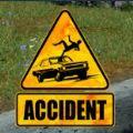 车祸现场模拟器中文版安卓游戏(Accident) v1.4