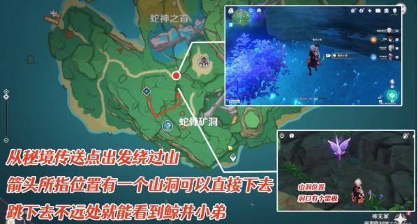 原神鲸井小弟手鞠在哪 鲸井小弟蛇神之首位置总汇[多图]图片3