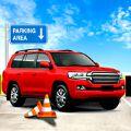 3D驾驶停车挑战游戏下载安卓版 v1.0
