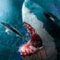鲨鱼狩猎模拟器游戏最新安卓下载 v1.2