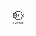 bx软件库官网app下载最新版账号 v1.0