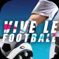 Vive le Football游戏