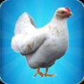 一只特立独行的鸡游戏官方最新版 v1.0