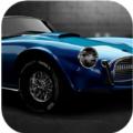 肌肉速度安卓版手機版遊戲 v2.0.0