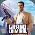 大犯罪大佬无限子弹无限生命无限金钱版下载 v1.0
