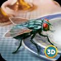 3D仿真苍蝇模拟器安卓版游戏下载 v1.0.0