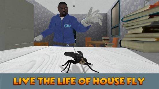 3D仿真苍蝇模拟器安卓版游戏下载图片1