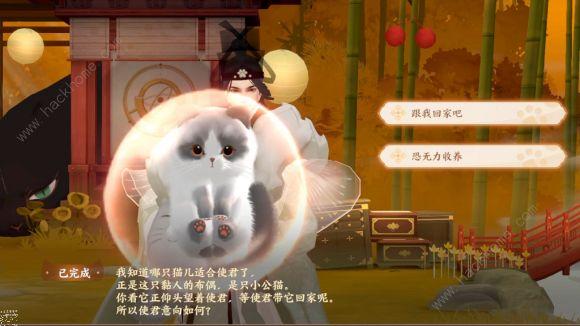忘川风华录可爱的猫咪捏脸代码大全 2021好看的猫咪怎么捏脸[多图]图片2