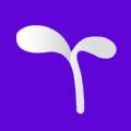 豆芽账app手机版 v1.0.1