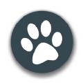 兽音译者ios官网解码app下载 v1.5