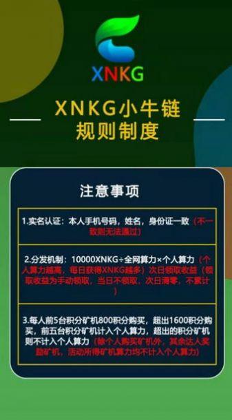 XNKG小牛链交易所app官方版图1: