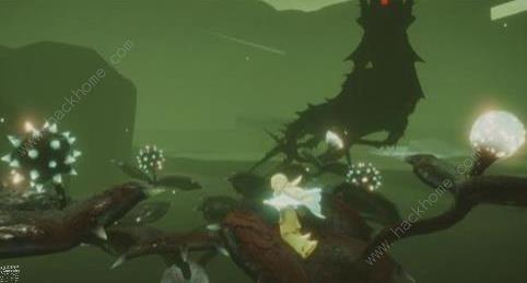 光遇5.16巨兽荒原的神坛冥想任务攻略 5.16巨兽荒原的神坛冥想在哪[多图]图片1