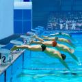 史上最蠢游泳游戏
