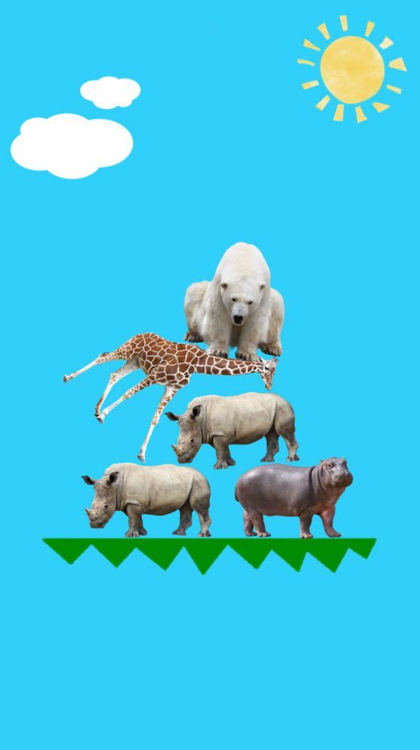 动物叠叠乐游戏安卓版图2: