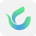 绿茶语音app官方最新版软件 v1.0