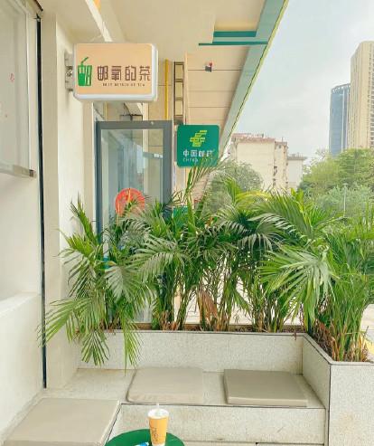 中国邮政邮氧的茶app图1: