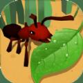 蚂蚁进化3d攻陷红蚁版