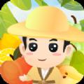 水果大挑战游戏app正式版 v1.0