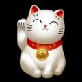 萌宠养成记游戏领红包福利版 v1.0