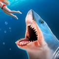 鲨鱼跑抖音游戏安卓版 v1.0.0